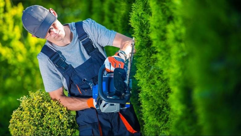 Få en handyman til at klippe hæk eller slå græs